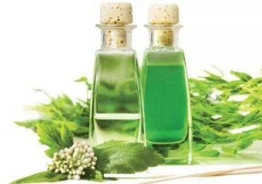 Экстракты трав и растений в косметике, фото