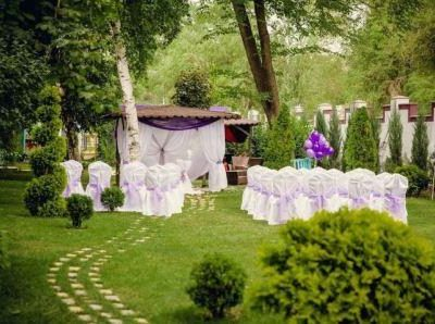 Свадебное торжество на природе, фото