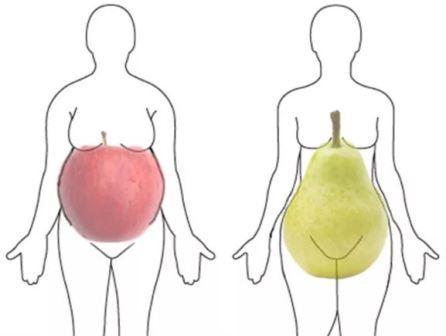 Гиноидное и андроидное ожирение