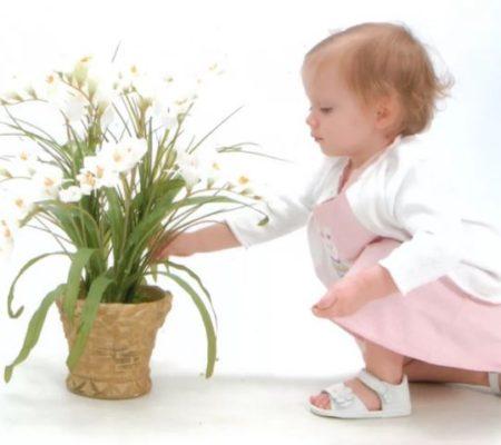 Комнатные цветы для детской
