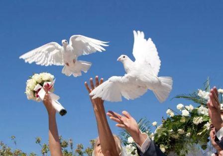Свадебная традиция запуска голубей