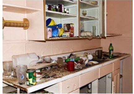 Тараканы в квартире: как избавиться