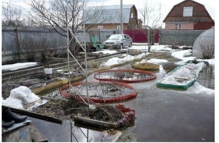 Ранняя обработка сада весной от болезней