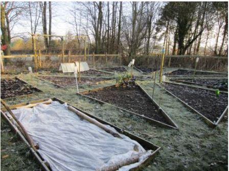 Весенние работы в саду в марте