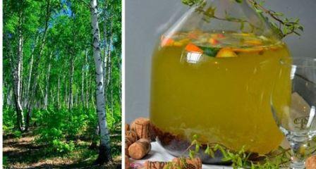 Березовый сок для организма