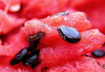В чём польза арбузных семечек