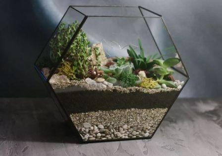 Флорариум: мини-оранжерея в стеклянной вазе