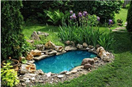 Как сделать мини-водоем на участке